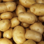 Potato: Health benefits and famous recipes