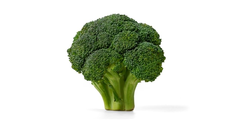 Is Broccoli a Fruit or Vegetable