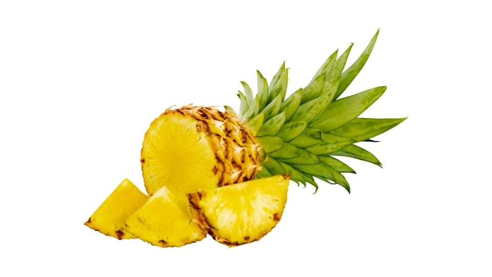 is pineapple a fruit or a vegetable