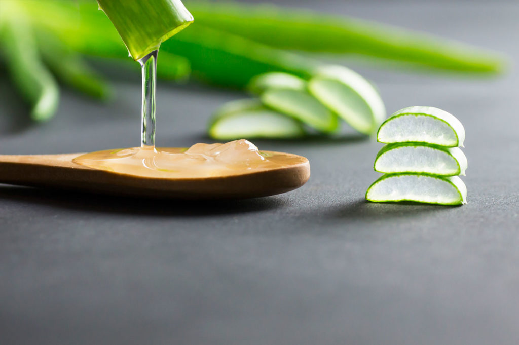 Pouring the gel out of a cut stem of a aloe vera plant leaf